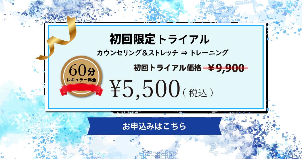 初回トライアル5,500円